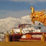 Local Tibetan Travel Agency