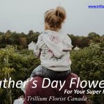Father's Day Flowers By Trillium Florist Canada