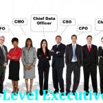 How many C-Level Executive Email List are there & Who is Providing It?