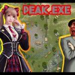 PEAK.EXE 0.0.1