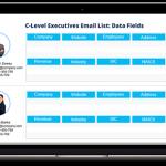 C Level Executives List