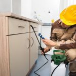 Pest Control Tips: How To Prevent Pests from Your Home in Sydney