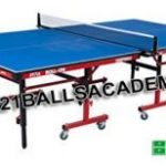 Table Tennis Basic Rules