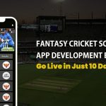 Fantasy Cricket Website Development Experts