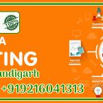 Social Media Marketing Company in Chandigarh