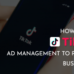 How to Nail TikTok Ad Management to Promote Businesses? – GeeksChip