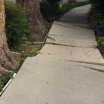 Fall due to Cracked or Broken Sidewalks