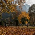 Cheap Kashmir Tour Packages | Cheapest Holiday Packages For Kashmir