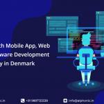 Web Development Company in Denmark