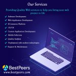 What Makes a Good Web Development Company – bestpeers