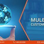 MuleSoft Customers List