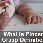 Pincer Grasp – What Is Pincer Grasp Definition