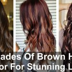 Shades Of Brown Hair Color For Stunning Look